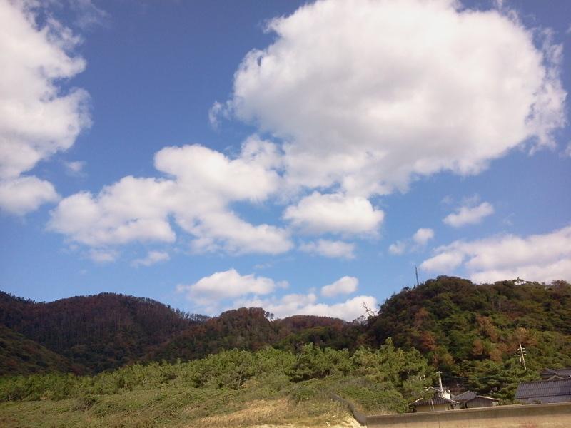 2011-10-26 11.37.09.jpg